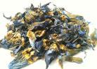 500g Blue Lotus (Nymphaea caerulea)